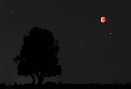 火星 見える 方角