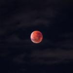金星の表面の色はどうなっているの!?