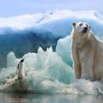 地球の気候変動の影響とは!?