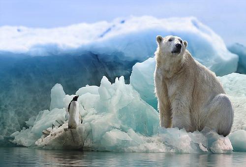地球 気候変動 影響