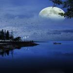 地球と月の関係とは!?もしも月が無かったら?