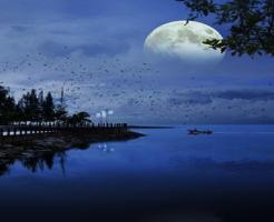 地球 月 関係