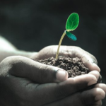 火星での植物栽培は可能なのか?