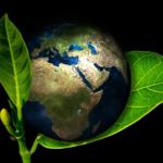地球最初の植物とは何!?どうやってできたの!?